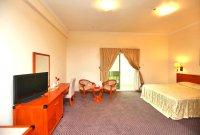 AL Seef Hotel 3*