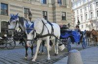 На вікенд: Будапешт + Відень 2018 рік від 55 Є