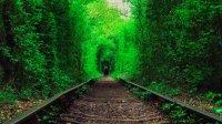 Подорож для закоханих у  Тараканів Форт та Тунель кохання!